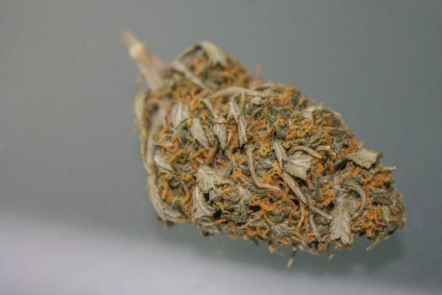 white widow cannabis strain flower
